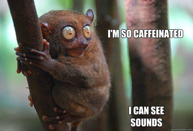 caffeine-meme